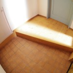 玄関に階段下収納の扉があります。