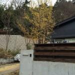 コンクリート打ちっぱなしとウッドフェンスの組み合わせ